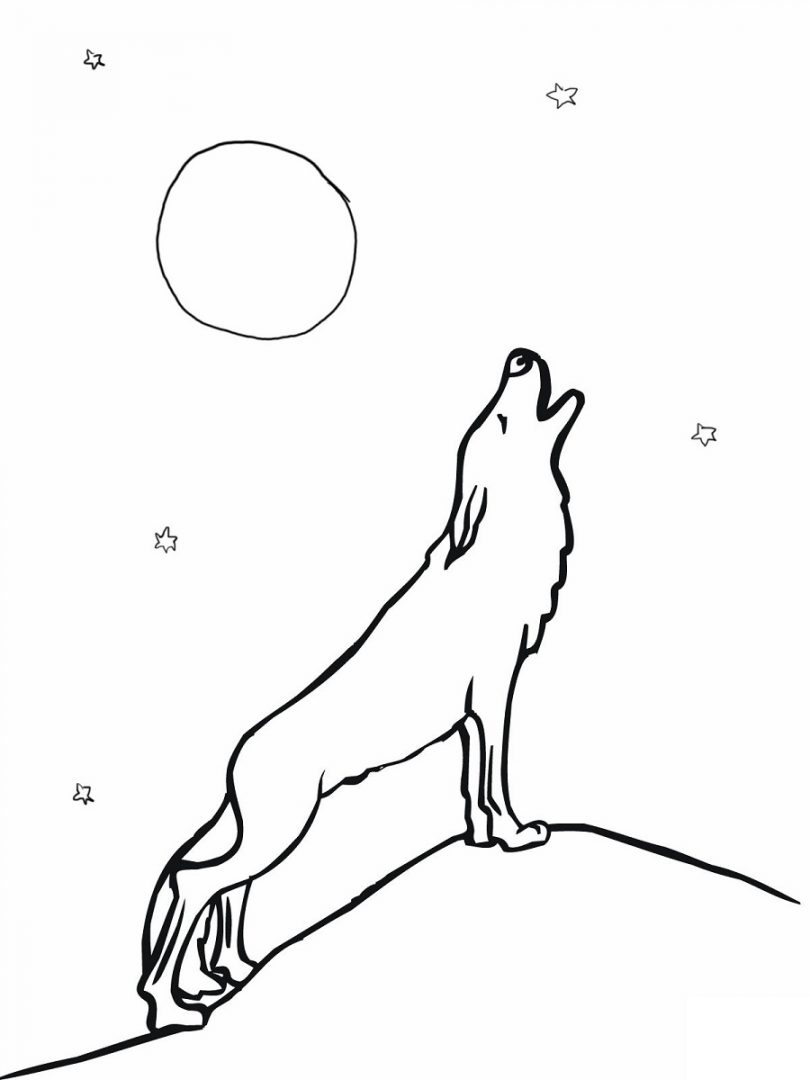 Galera de imgenes Dibujos de lobos para colorear