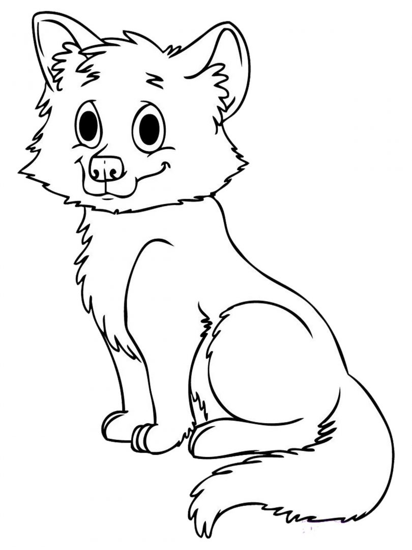 Dibujo de un cachorro de lobo :: Imágenes y fotos