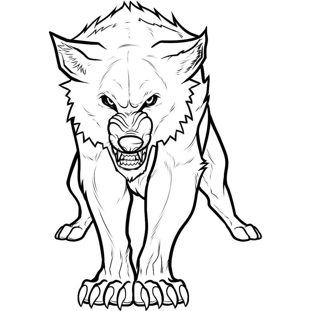 Dibujo de un lobo agresivo :: Imágenes y fotos