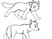 Dibujos De Lobos Para Colorear